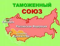 В Молдавии начат сбор подписей в поддержку присоединения страны к Таможенному союзу