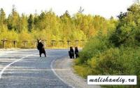Travel to Russia hitchhiking