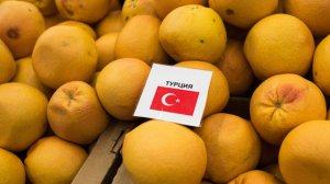 Россия создает инвестфонд с Турцией объемом $1 млрд