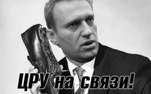 Зюганов: расследование Навального готовили три института ЦРУ