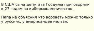 Сына депутата Госдумы приговорили в США к 27 годам тюрьмы за кибермошенничество