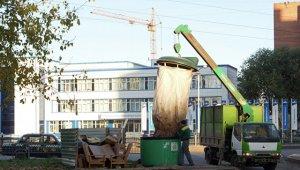 В Крыму под двери ответственных за уборку чиновников вывалили мусор