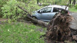 Два человека погибли из-за урагана в Москве