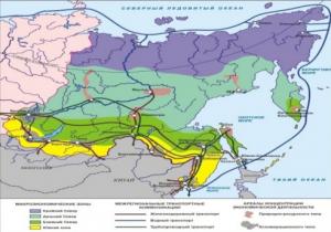 """""""Ледяной Шелковый путь"""": Возможности Арктического маршрута"""