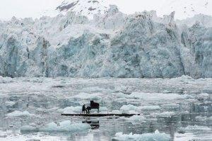 Музыка среди ледников
