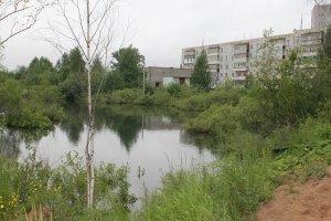 Кировские эксперты ОНФ взяли на контроль решение проблемы с подтоплениями в микрорайоне Озерки