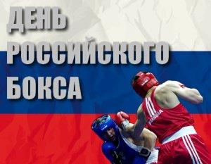 Шоу на Красной площади: в Москве впервые отпразднуют День российского бокса