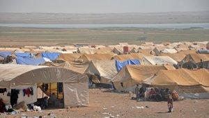 Беженцы в зоне присутствия США в Сирии попросили помощи у российской стороны и сирийских властей