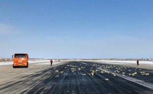 В Якутске из вылетавшего самолета просыпалось золото