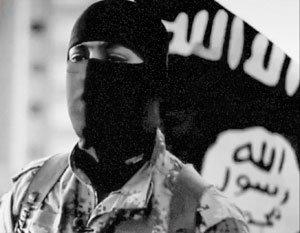 Франция призналась, почему Запад боится разгрома боевиков в Идлибе