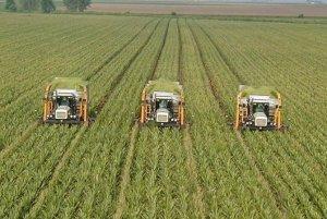 Порошенко обрадовал: крупнейший украинский агрохолдинг стал собственностью Саудовской Аравии