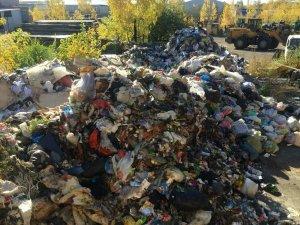 """""""Вонь стоит невыносимая"""": мусор из челябинских дворов свезли на окраину города"""