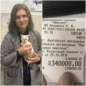 Неизвестная девушка оплатила долг майкопского приюта для животных в 340 тысяч