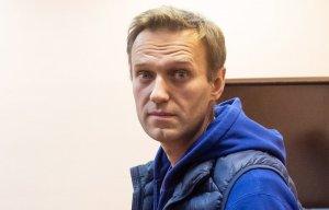 Суд Петербурга взыскал со сторонников Навального свыше 7 млн руб. за вытоптанный газон