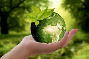 WWF признал Францию главным загрязнителем Средиземного моря пластиком .