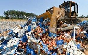 В правительстве РФ поддержали идею о том, что пора прекратить давить бульдозерами санкционные продукты