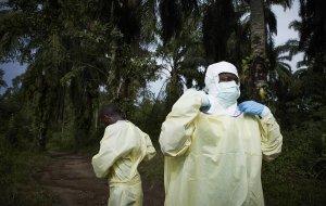Ученые выяснили, как предсказать следующую эпидемию лихорадки Эбола