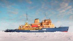 Российский ледокол подал сигнал SOS случайно