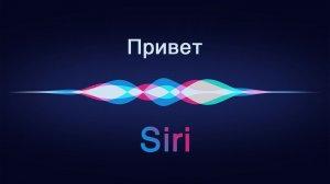 Что делать, если Siri не работает?