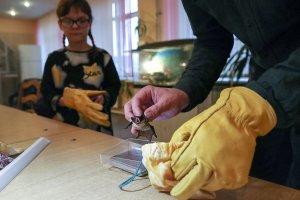 Роспотребнадзор проверит летучих мышей в РФ на наличие коронавируса