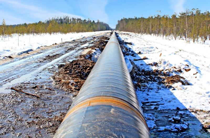 """Снос дач у газовой трубы: как правительство """"исполняет"""" поручения президента"""