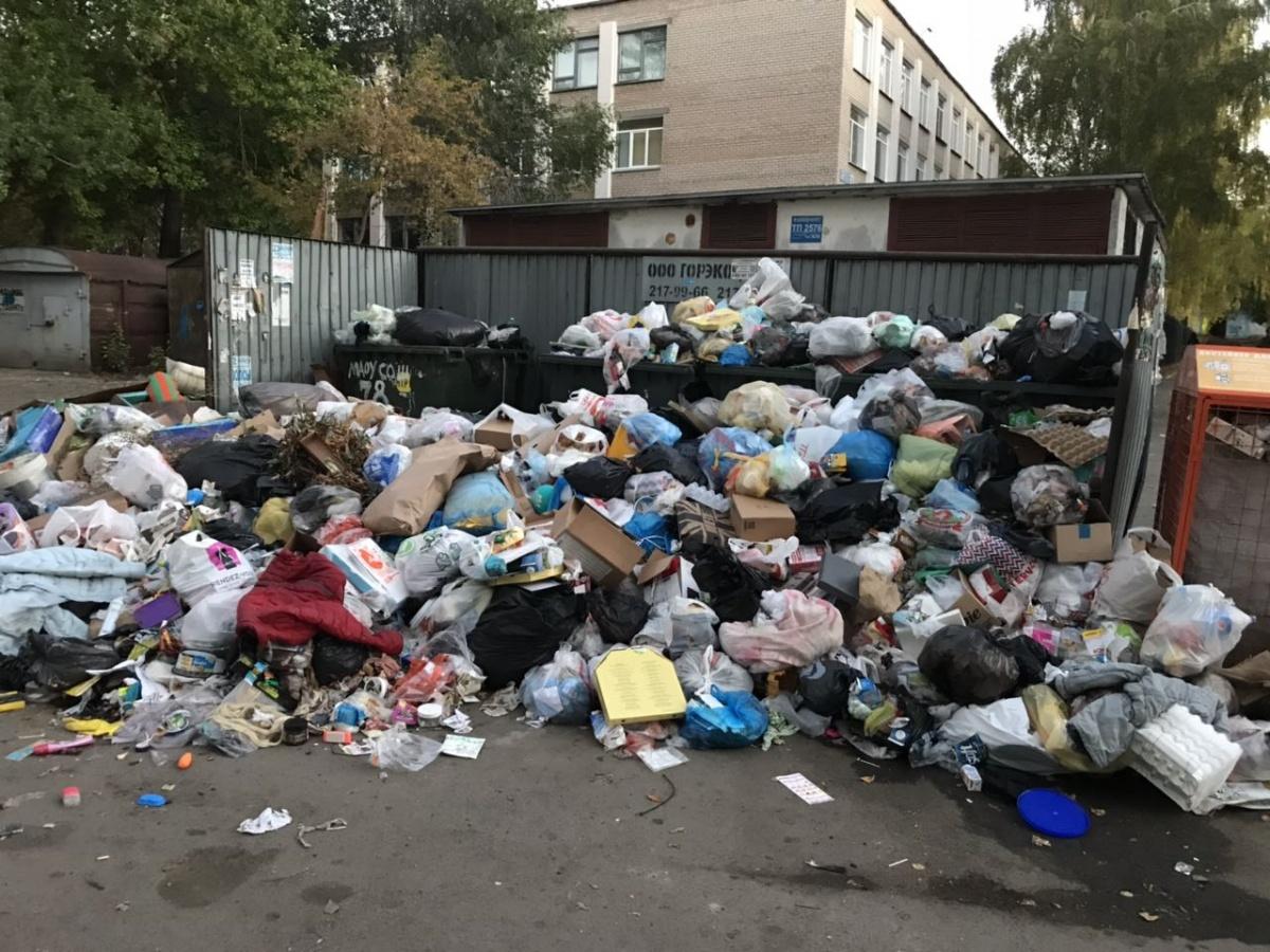 [Мусор и ныне там] С мусорным адом в Челябинске будет разбираться Генпрокуратура