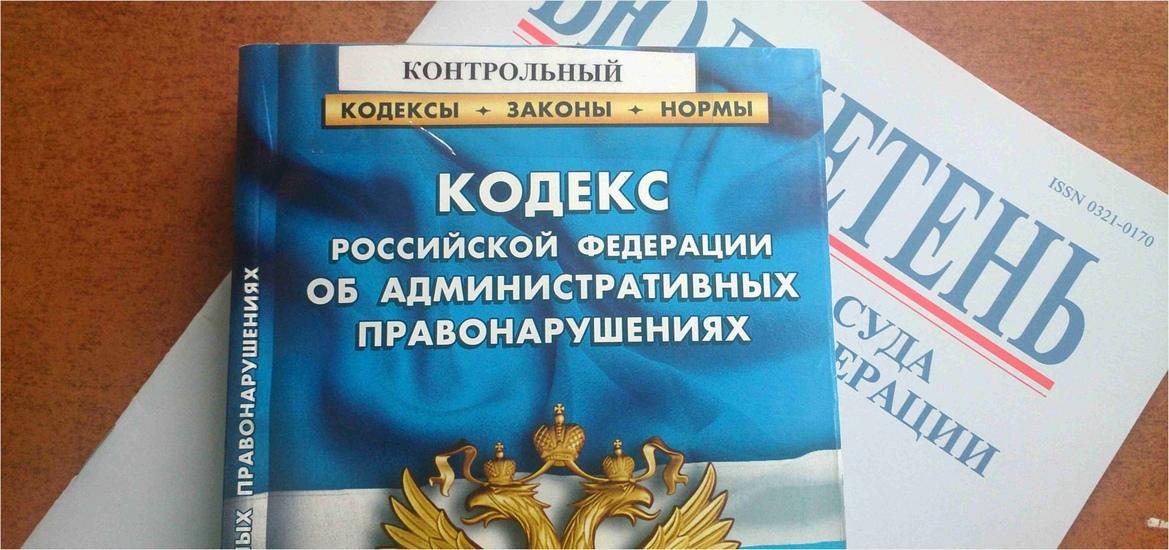 Дума одобрила аресты за вовлечение детей в митинги