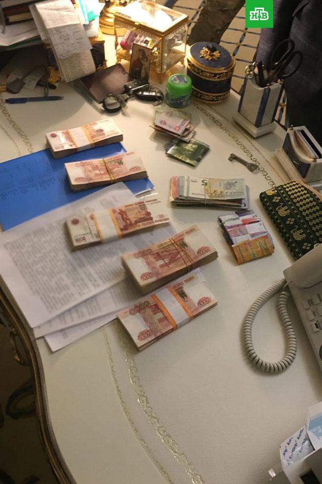 Следователи показали богатства фигуранта дела о хищениях в Эрмитаже