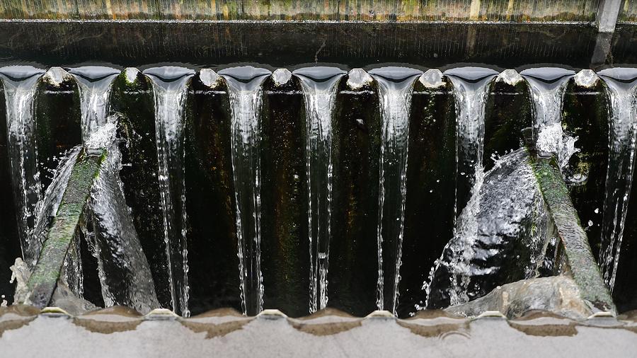 Они спасают планету: как российские ученые помогают очистить водоемы от загрязнений