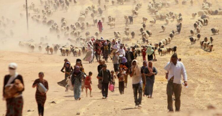 »зменение климата положило начало новому великому переселению народов