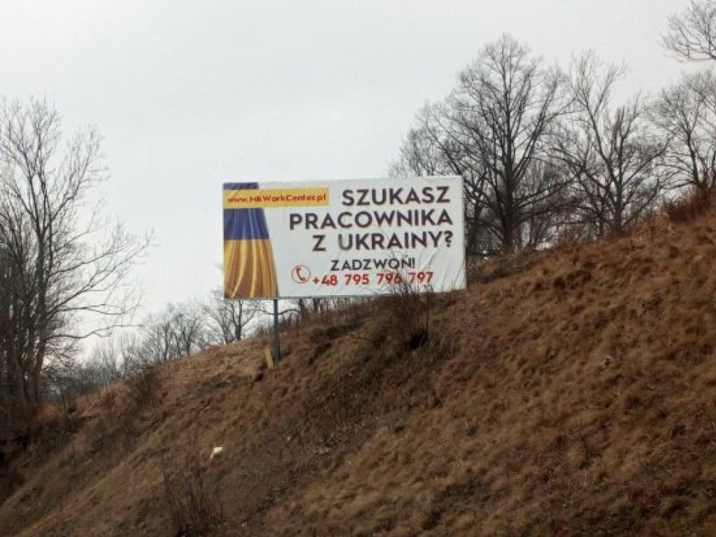 Украинцев продают на Западе как скот на базаре