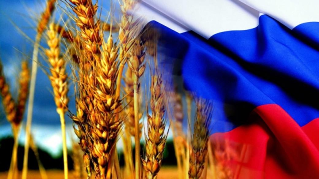 Крымский агрохолдинг планирует в этом году начать поставки пшеницы в Сирию