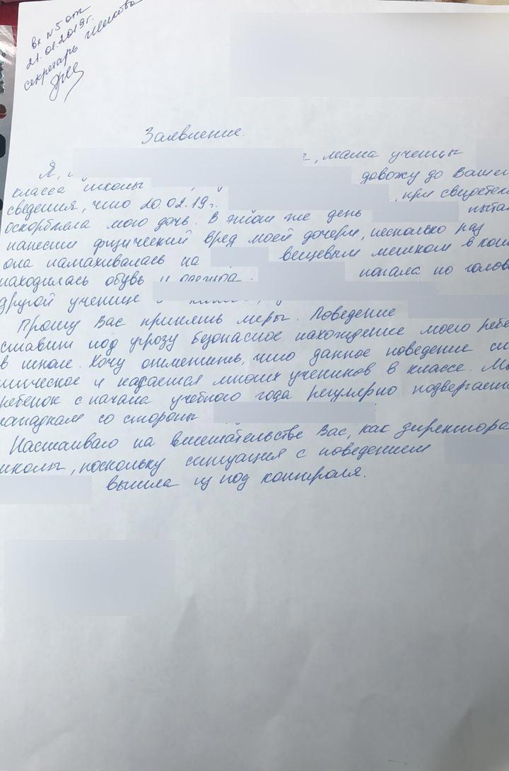 Подробности драки московских третьеклассниц: замешаны дочь судьи и внучка чиновника