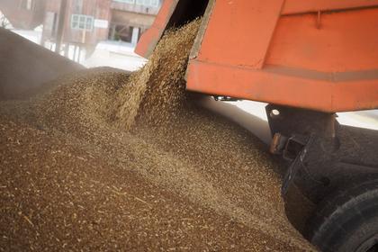 Россия рассматривает вариант с безвозмездной поставкой в Северную Корею 50 тысяч тонн пшеницы.