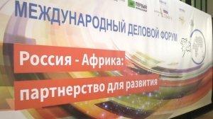 Россия и Африка закрепят экономическую интеграцию конкретными проектами на саммите в Сочи