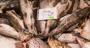 В Латвии умирает целая отрасль: латышские рыбаки уезжают в Россию, не говоря…