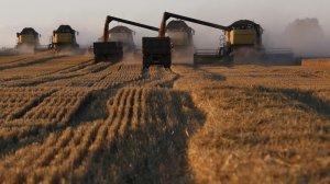 Bloomberg: призыв Путина сдержать рост цен на продукты взбудоражил мировые рынки …