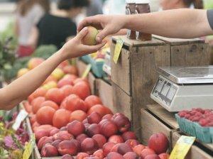 В России число продуктов с нарушением содержания ГМО упало в 8…