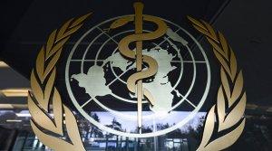 Коронавирус: ВОЗ раскритиковала Украину за эксперименты над…