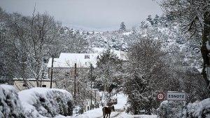 В Испании зафиксирована самая низкая температура в истории - -35,8 ° C. В Мадриде…