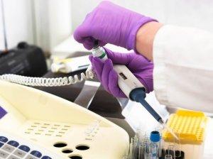 """Американцы нашли """"сногсшибательные"""" доказательства создания коронавируса…"""