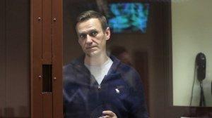 Навальный признал, что мог оскорбить…