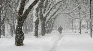 Синоптики рассказали о высоте снежного покрова в…