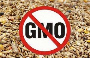 Россельхознадзор со 2 марта ограничивает ввоз кормов и кормовых добавок из…
