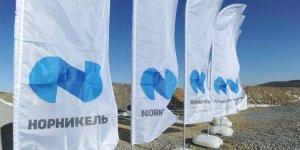 Экологические инициативы Норникеля получили международное…